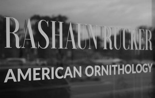 Rashaun Rucker Explores Black Male Identity in American Ornithology